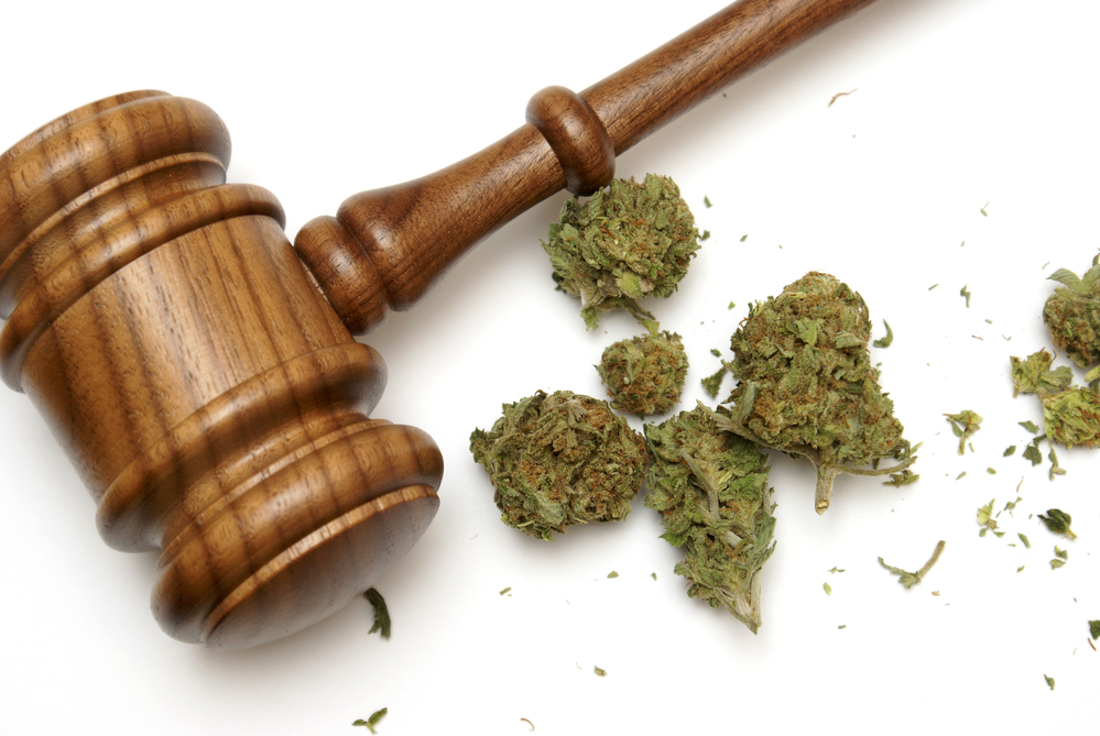 Marijuana Criminal Defense South Florida